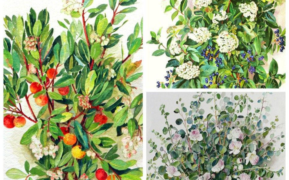 opere del pittore Gianfranco Sanguineti